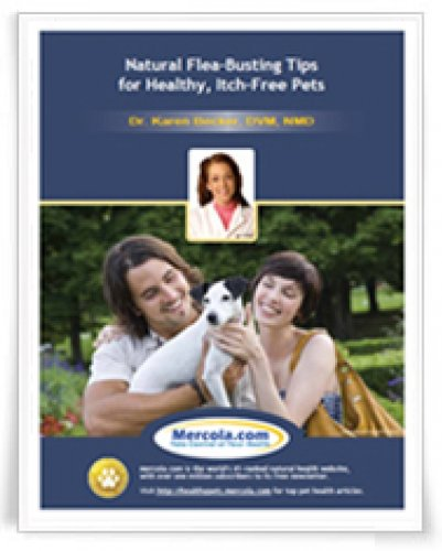 Natural Flea-Busting Tips for Healthy, Itch-Free Pets (Health News Letters Book 107)