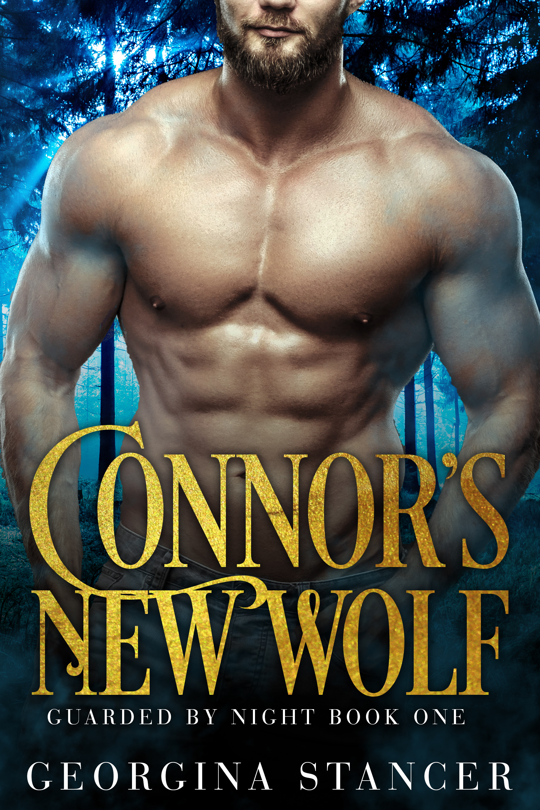 Connor's New Wolf (Guarded by Night, #1)