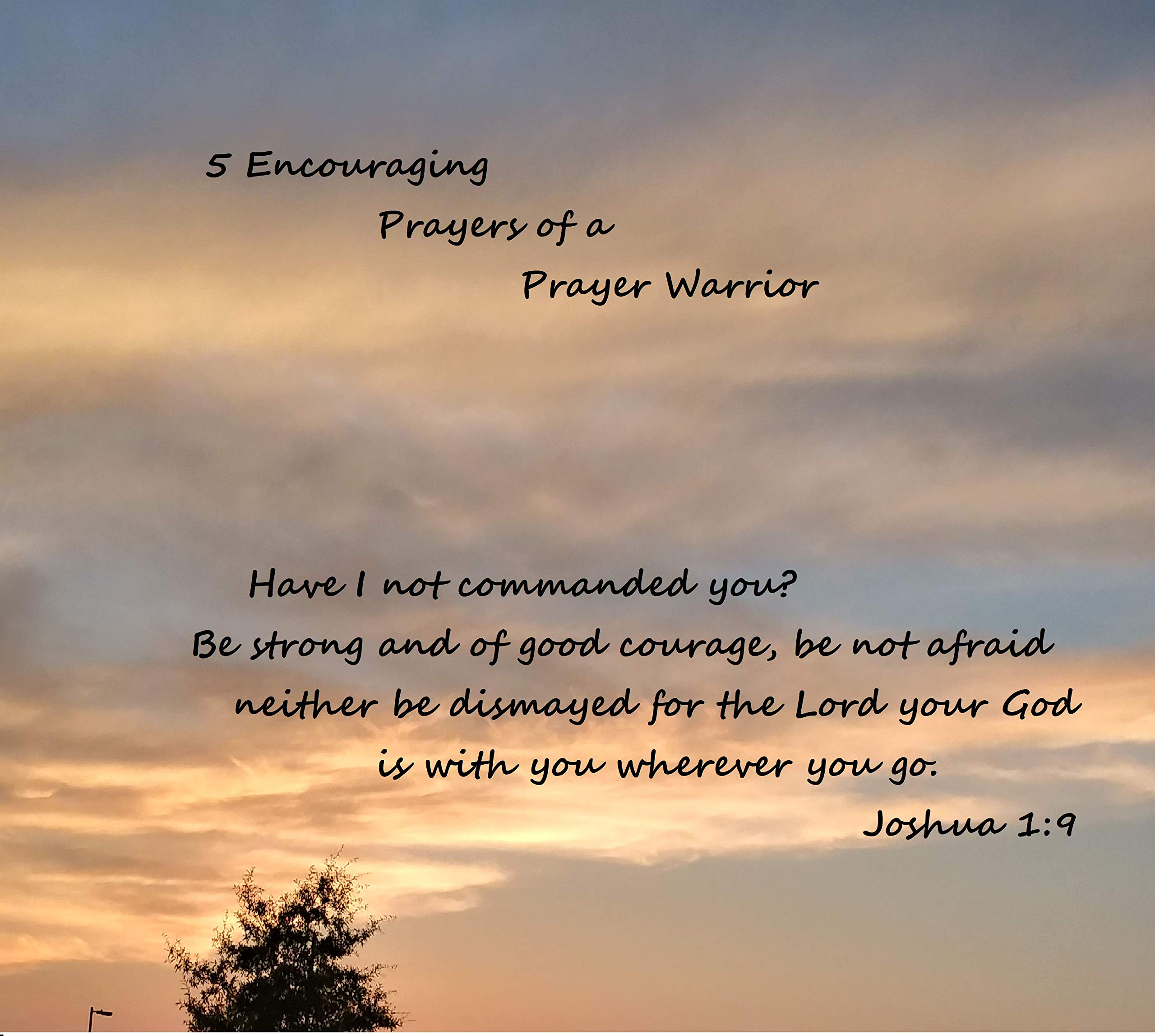 Book of Prayers and Encouragement: From the Heart of a Prayer Warrior