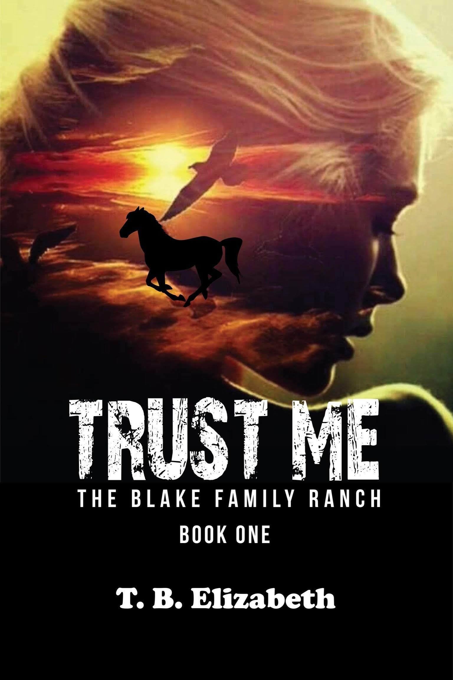 Trust Me (The Blake Family Ranch #1)