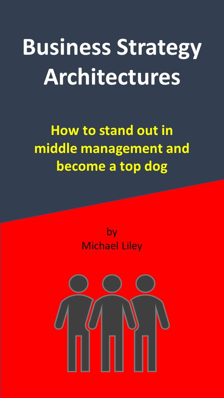 Business Strategy Architectures: How to stand out in middle management and become a top dog.