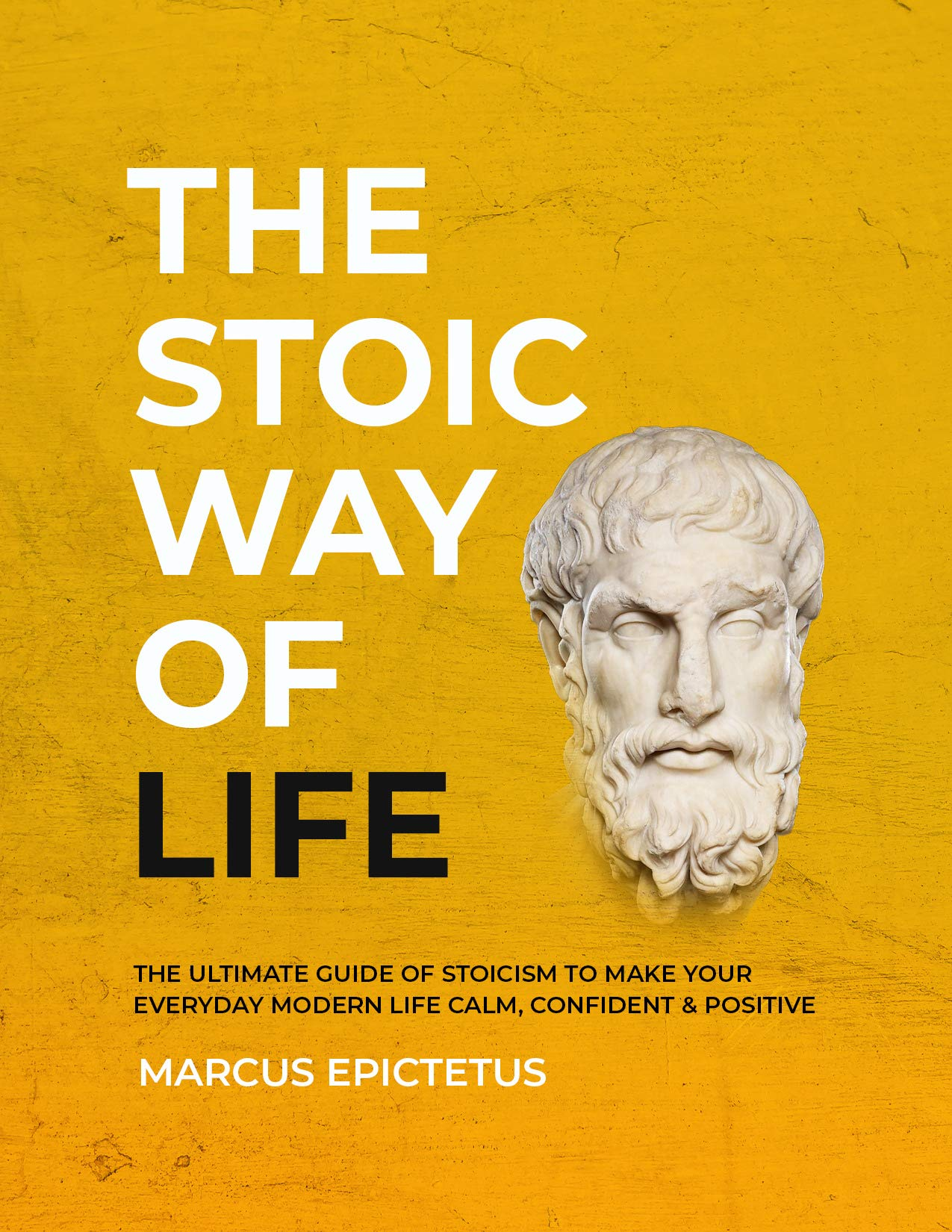 The Stoic way of Life: The ultimate guide of Stoicism to make your everyday modern life Calm, Confident & Positive - Master the Art of Living, Emotional ... & Perseverance (Mastering Stoicism Book 1)