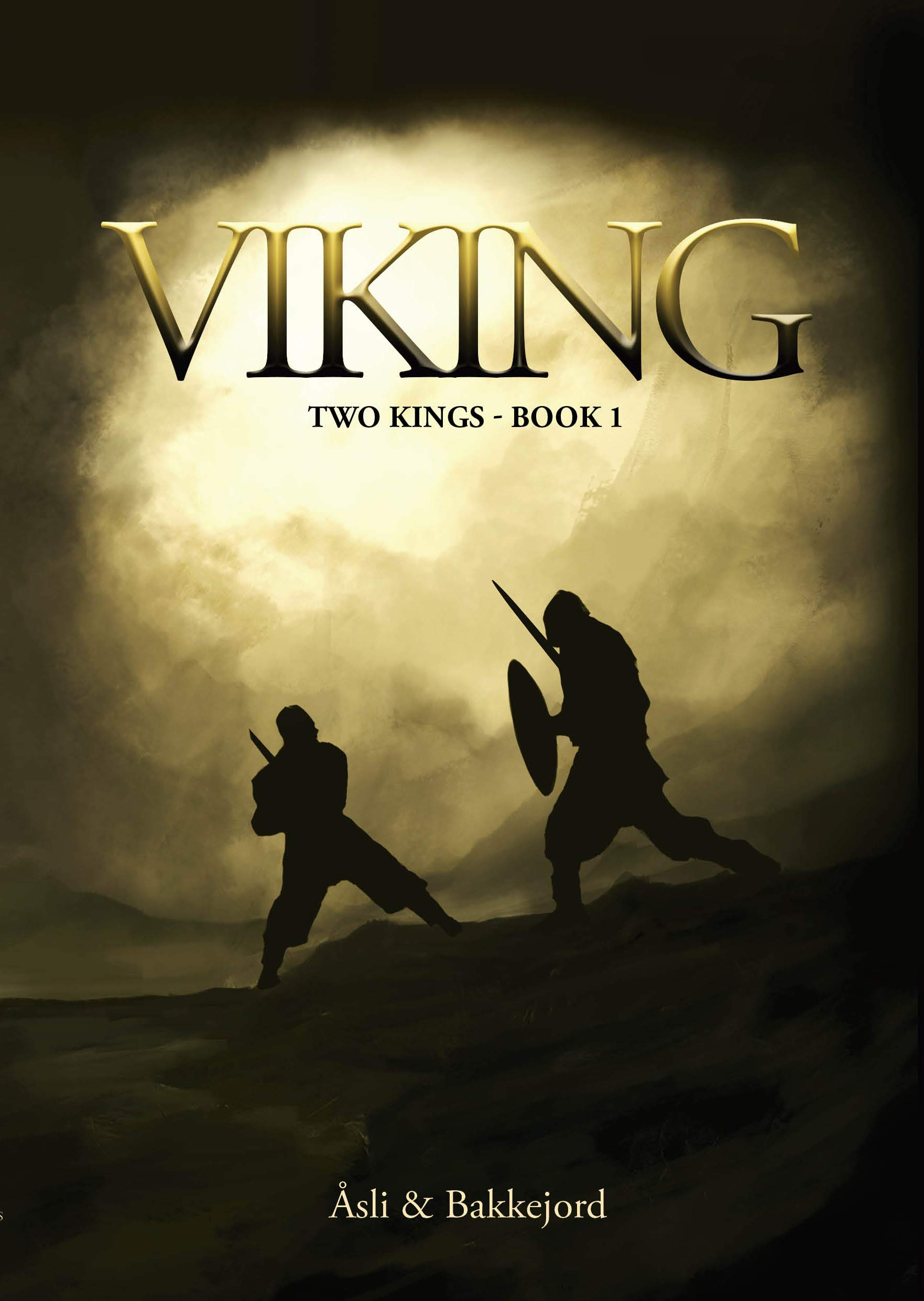 Viking: A historical fiction adventure (Two kings Book 1)