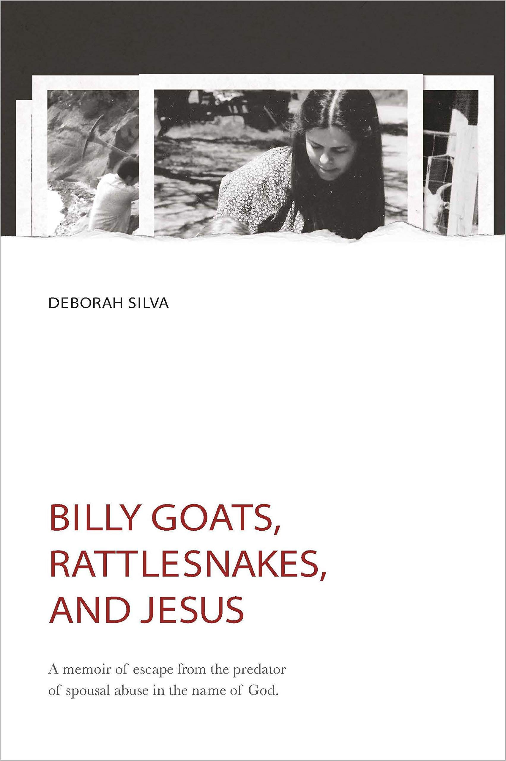 Billy Goats, Rattlesnakes, and Jesus: A memoir of escape from the predator of spousal abuse in the name of God. (Off Ramp Book 2)