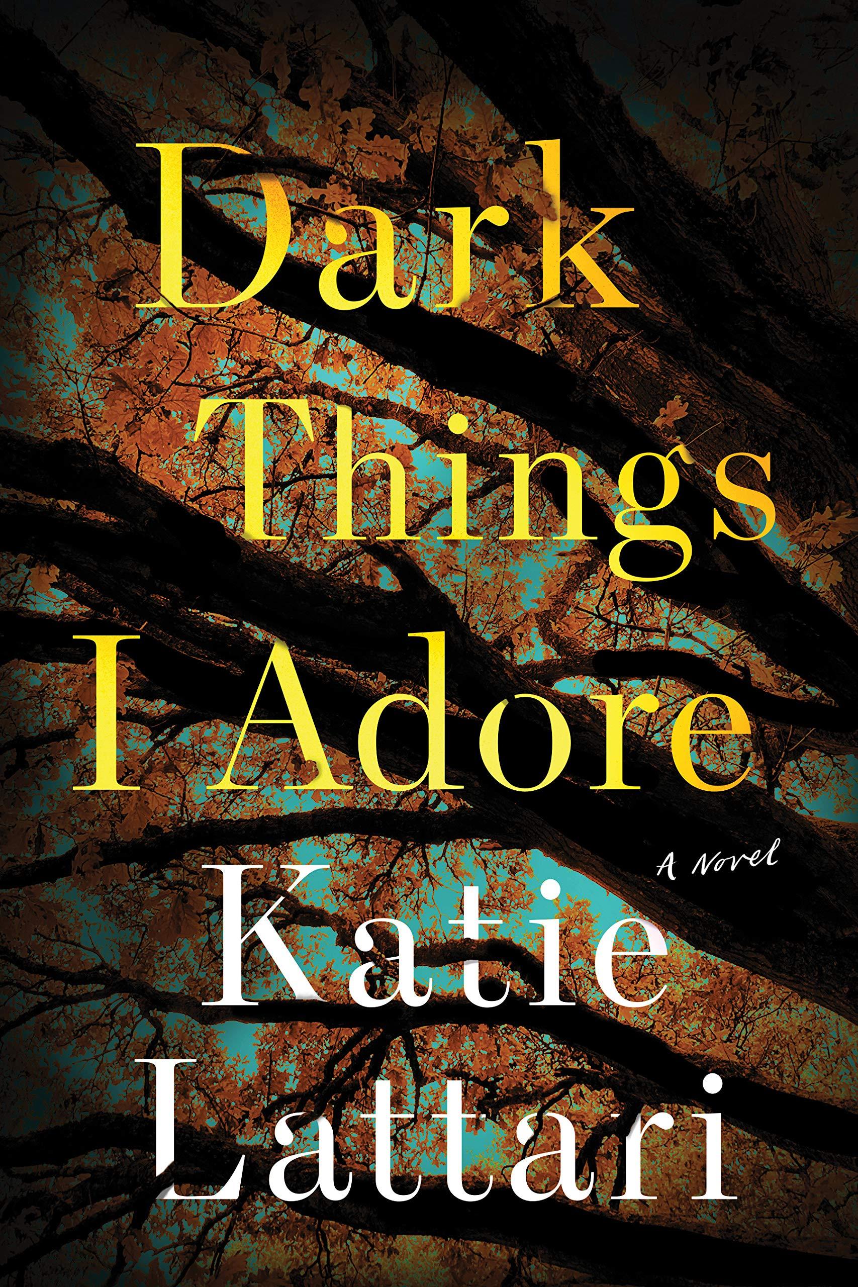 Dark Things I Adore: A Novel