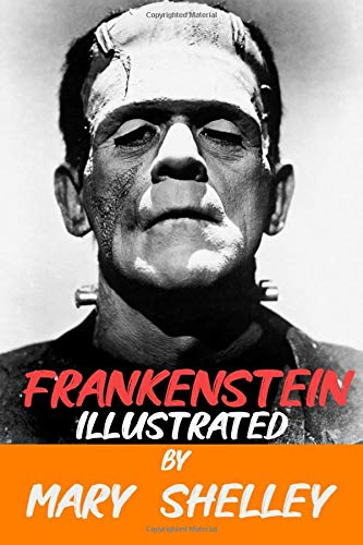 Frankenstein Illustrated: Frankenstein mary shelley 1818 edition Complete with Great New and Original Classics Sketch Illustration and additional explanation