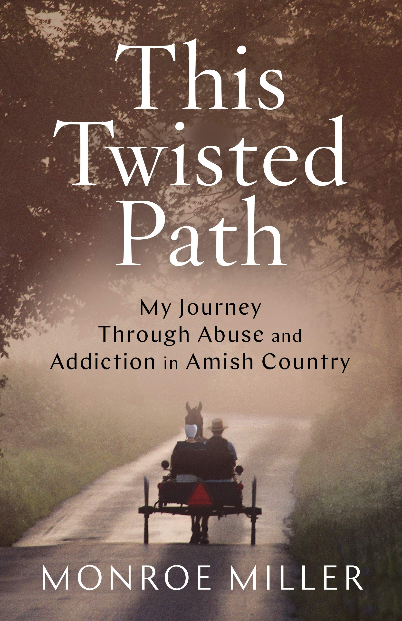 This Twisted Path: My Journey through Abuse and Addiction in Amish Country