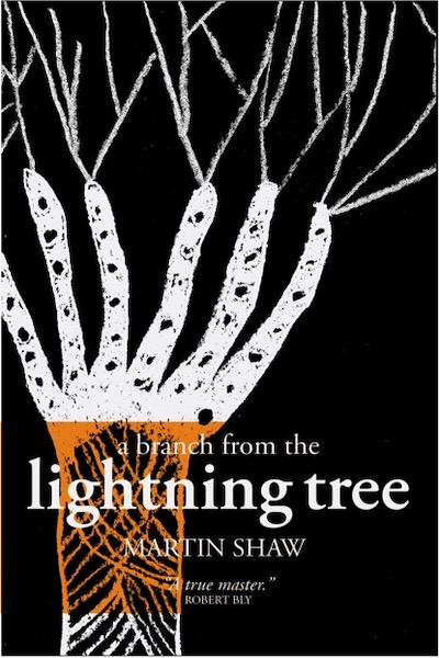 A Branch from the Lightning Tree (The Mythteller trilogy, vol. 1)