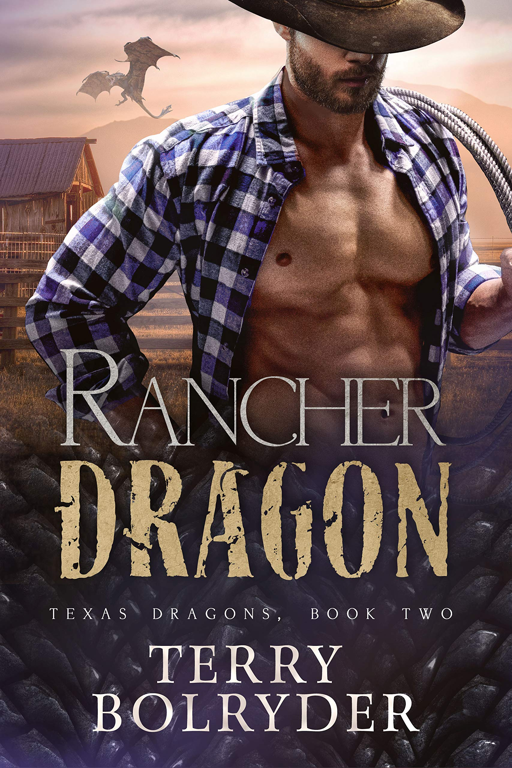 Rancher Dragon (Texas Dragons #2)