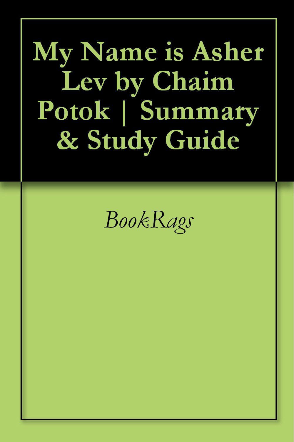 My Name is Asher Lev by Chaim Potok | Summary & Study Guide