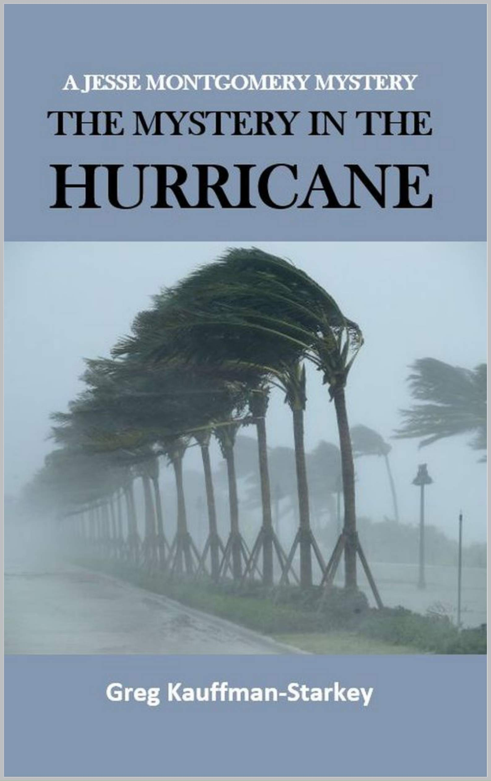 Mystery in the Hurricane (A Jesse Montgomery Mystery #0.5)