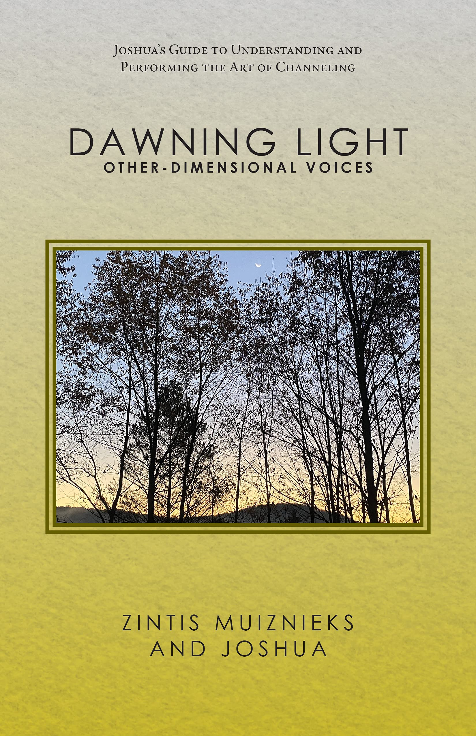 Dawning Light: Other-dimensional Voices: Joshua's Guide to Understanding and Performing the Art of Channeling