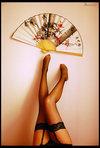 Erotic Fan