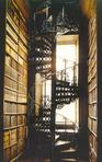 The Balcony of Europe: A Novel Group