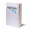 Agile-Spain