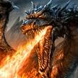 The Dragonbond Program