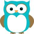 Kindle Owl