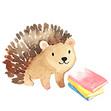 The Hedgeathon Summer Reading Challenge