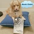 Doggie Book Club