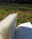 Reading & Rambling