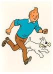 Tintin Fans