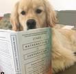Booz Allen Book Club