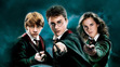 The Harry Potters