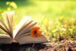 Conserve 2 Preserve Book Club