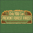"""Beaumont """"Ty"""" Tyler Grady Forest Fires"""
