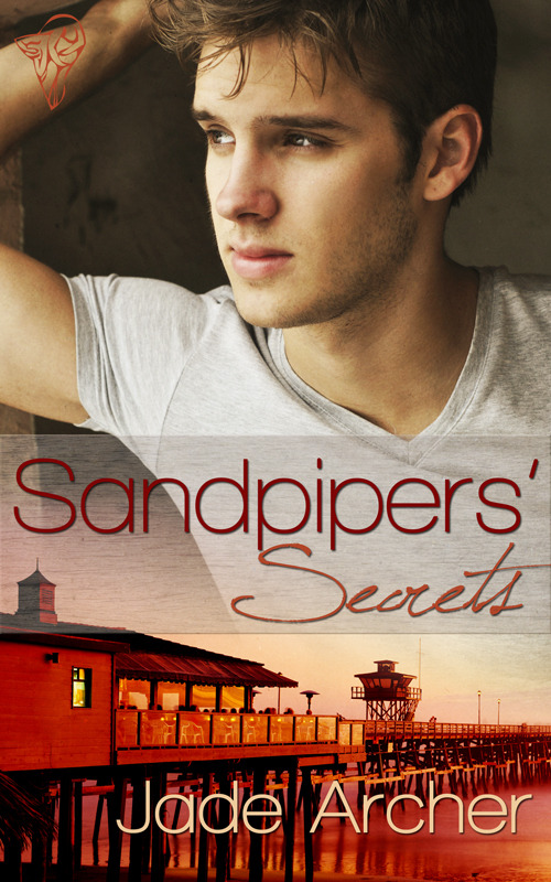 This is the cover art by Lyn Taylor for the first book in the Sandpipers series.