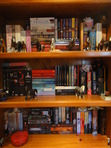 So that is what I call my 'old' bookshelf. I've had it since forever, and if you can't already tell, I'm a horse lover. ^-^  It all used to be alphabetised until I ran out of room and had to start what I call 'the stacks' - i.e. the piles of books on their sides. If there are gaps, it's because either I am reading that book at the moment or someone has borrowed it.  TOP SHELF: Some tall paperbacks, adult fiction or stuff I've saved from my mum (she has a tendancy to *shockhorror* crush books...)  MIDDLE SHELF: Yet more random paperbacks... ^-^  BOTTOM SHELF: And... wait for it... more paperbacks!! There's a gap next to COG because I'm currently reading COFA ;) Oh, and that big red thing is a candle. It smells soooo good!!