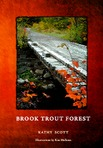 On September 30th the forests of Maine wear the colors of brook trout.  Here begins a journey every angler knows.