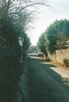 """Street in Rodmell. Picture taken from Monk's House towards the village centre.  Picture taken in 2005.  """"One of the charms of Rodmell is the human life: everyone does the same thing at the same hour: when the old vicar performs erractically on the bells, after churching the women, everybody hears him, & knows what he's up to. Everyone is in his, or their garden; lamps are lit, but people like the last daylight, which was brown purple last night, heavy with all this rain. What I mean is that we are a community.  (The Diary of Virginia Woolf, 1922, p. 71)"""