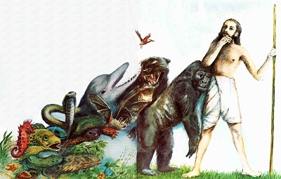 charles darwin theory of evolution essay essay charles darwin theory evolution essay academic service