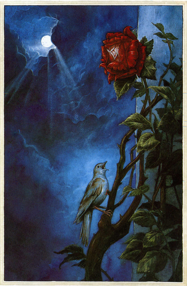 Gorgeous full-page illustration for 'The Nightingale and the Rose' showing the Nightingale's sacrifice