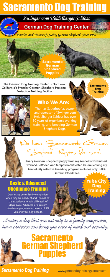 Check this link right here https://www.clippings.me/marysvilledog for more information on Yuba City Dog Training. There are many training techniques and philosophies that claim to be the fastest, easiest or most effective way to train your dog. The one thing that every Yuba City Dog Training technique seems to mirror is that positive reinforcement and reward is the most effective. Regularly trainers at the dog training schools put the smartest dogs ahead of their pack as their leader and will act as the example of great behavior for the other dogs to follow.Follow Us: http://marysvilledogtraining.snack.ws/