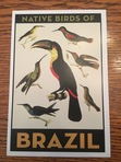 The front side of the Native Birds of Brazil postcard.