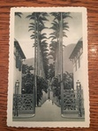 Front side of the postcard of a palm tree lined path.