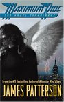 In maximum ride the angel experiment what does school do?