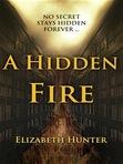 In [b:A Hidden Fire 12886110 A Hidden Fire (Elemental Mysteries) Elizabeth   Hunter http://photo.goodreads.com/books/1318996789s/12886110.jpg 17897317] by [a:Elizabeth   Hunter 5251202 Elizabeth   Hunter http://photo.goodreads.com/authors/1318456382p2/5251202.jpg] what is Giovanni Vecchio?