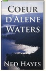 The novel Coeur d'Alene Waters by Ned Hayes reveals the truth about which mining disaster?