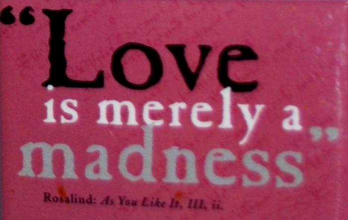"Shakespeare Quotes About Love Endearing Quotewilliam Shakespeare ""Love Is Merely A Madness."""