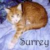 Surreysmum