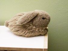 Raiveran Rabbit