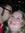 Brandi Celestino (celestino) | 5 comments