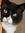 Calli's icon