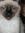 Kara (KitKatBar) | 7 comments