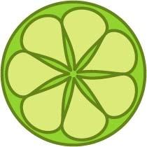 lime-lightdesigns.com Shel Holliday