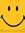 Zainab's icon