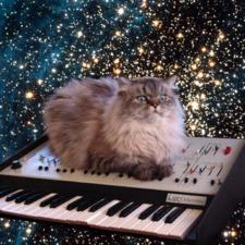 Cattybutler